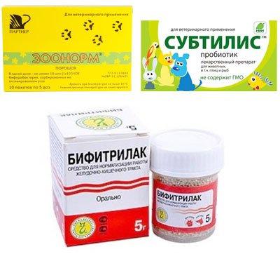 Бифидобактерии для кота что бы i